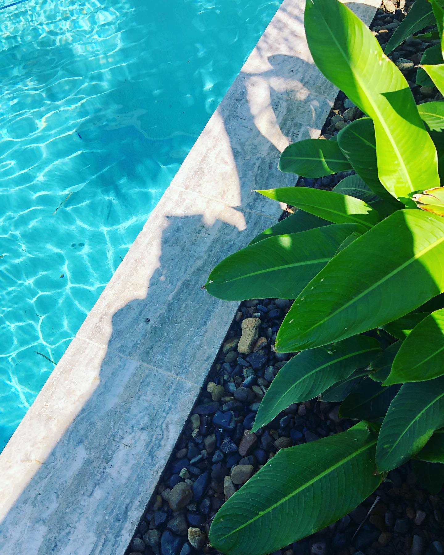 Natural Stone Pool Coping Ideas -aaronfoxlandscaping
