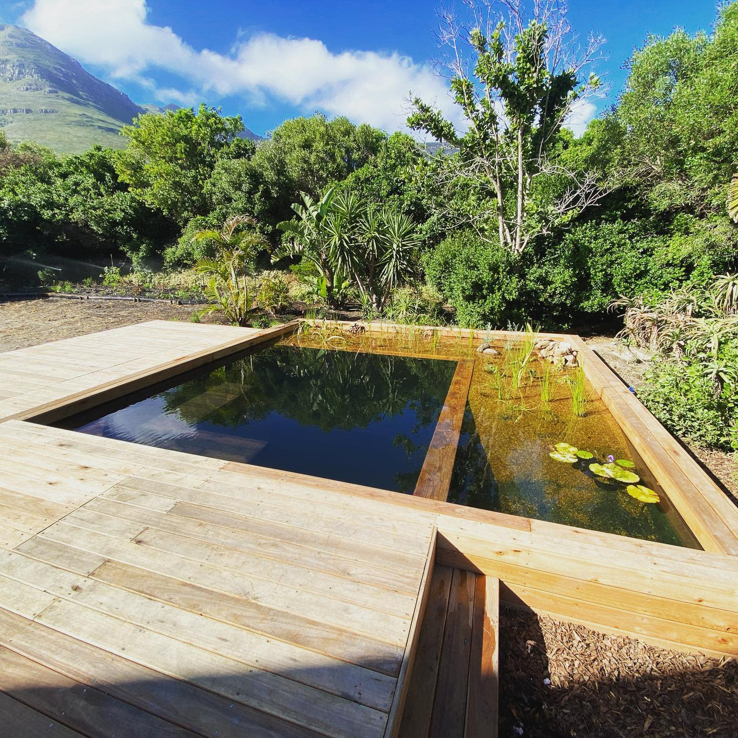 Swimming Pond Backyard Pond Ideas -leafandstone.permaculture