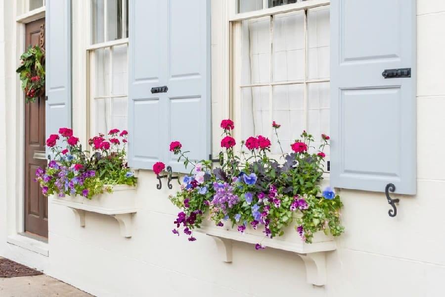 The Top 53 Window Box Ideas