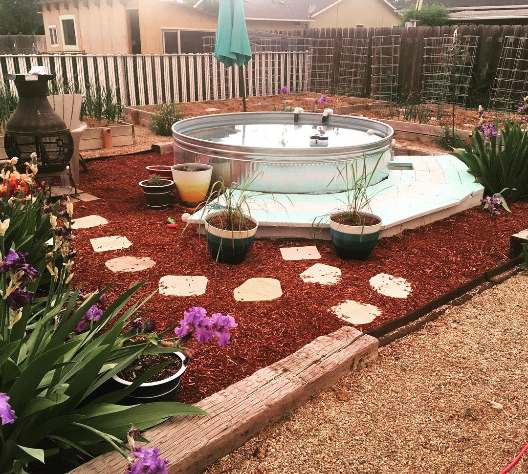 DIY Backyard Landscaping Ideas on a Budget -rootedrevivalhomestead